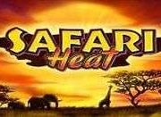 Safari Heat в казино